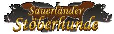 Sauerländer Stöberhunde